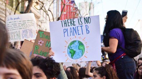 vegan-plant-based-news-environment-Cropped-1-1068x600